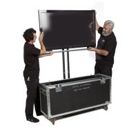 Large Flat Screen Displays